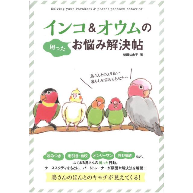 9996362【大泉書店】インコ&オウムのお悩み解決帖◆