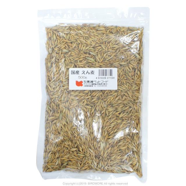 9996651【クロセ】国産 えん麦