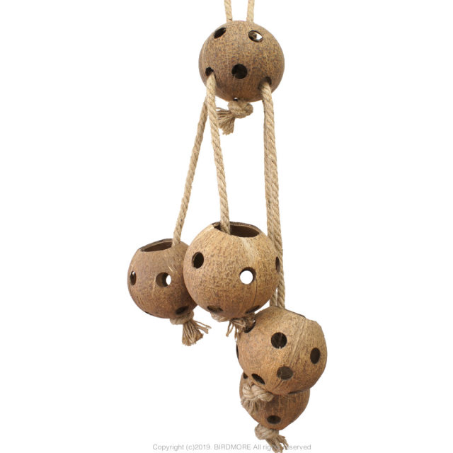 9997682【SBC】SB1123  Coconut Rope Swing & Forage