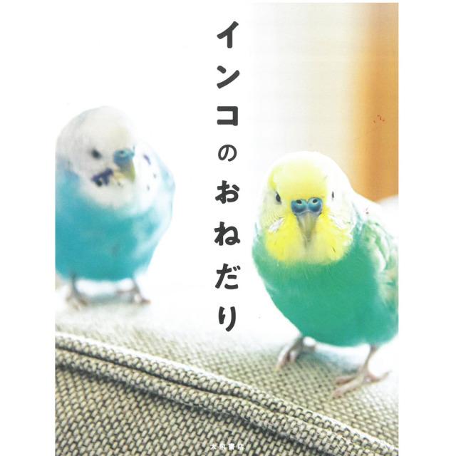 9997750【大泉書店】インコのおねだり◆