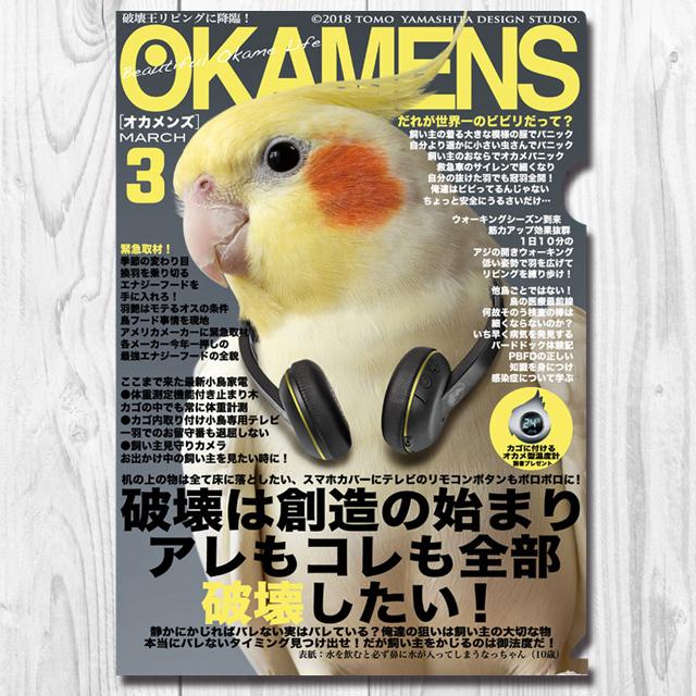 9997870【TOMO YAMASHITA DESIGN STUDIO】A4クリアファイル/オカメンズ3月号◆