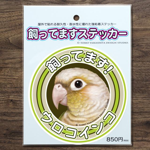 9997877【TOMO YAMASHITA DESIGN STUDIO】飼ってますステッカー ウロコインコ(シナモン)◆