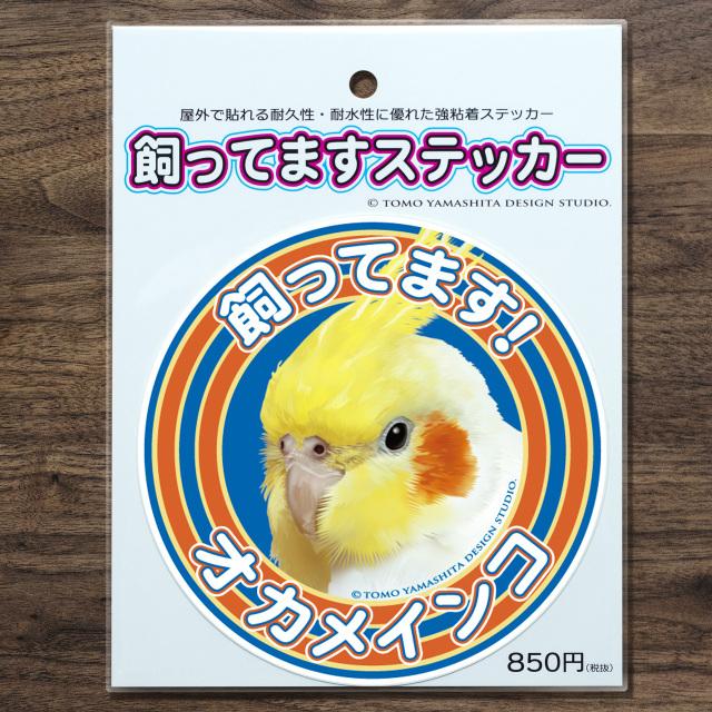 9997879【TOMO YAMASHITA DESIGN STUDIO】飼ってますステッカー オカメ/ルチノー◆