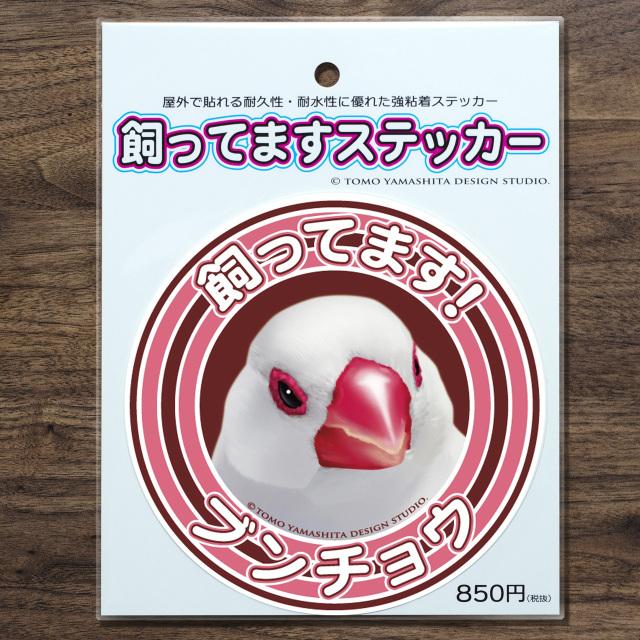 9997881【TOMO YAMASHITA DESIGN STUDIO】飼ってますステッカー 白文鳥◆
