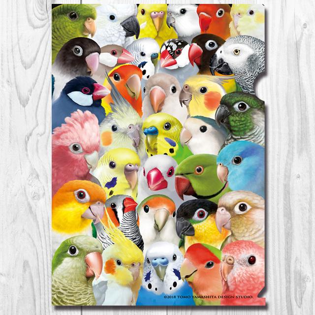9997915【TOMO YAMASHITA DESIGN STUDIO】A4クリアファイル/イラスト 「鳥たくさん」◆
