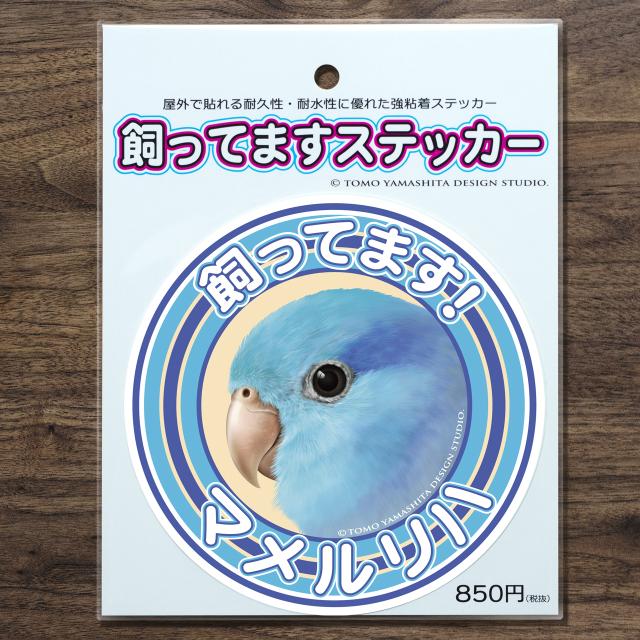 9998016【TOMO YAMASHITA DESIGN STUDIO】飼ってますステッカー マメルリハ◆