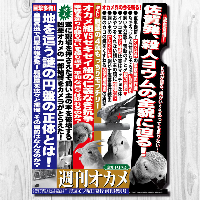 9998019【TOMO YAMASHITA DESIGN STUDIO】A4クリアファイル/週刊オカメ 「創刊号」◆