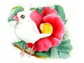 【親馬鹿倶楽部】ポストカード・椿/文鳥・白◆クロネコDM便可能