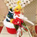 【あにまるめいと】★クリスマスポット/オカメ・シロ