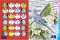 【ぴよぴよブランド】A4クリアファイル/セキセイ2羽◆クロネコDM便可能
