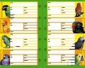 【金のくちばし】★リフィル・システム手帳用/中大型8種◆クロネコDM便可能