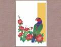【あトリえ】鳥と花のポストカード0408/オトメズグロインコ◆クロネコDM便可能