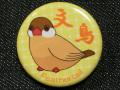 【FT&ぶんちょ屋】缶バッチ3黄/文鳥・シナモン◆クロネコDM便可能
