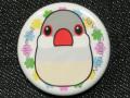 【FT&ぶんちょ屋】缶バッチ11/文鳥・シルバー◆クロネコDM便可能