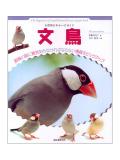 9992018【誠文堂新光社】ビギナーズガイド 文鳥◆クロネコDM便可能