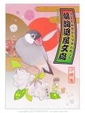 9994089【イーフェニックス】鳩胸退屈文鳥◆クロネコDM便可能