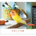 9995540【誠文堂新光社】 2020年ミニカレンダー/かわいい小鳥 ◆クロネコDM便可能