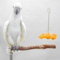 9995934★超特価★【LUCKY BIRD!】#0005 スペースステーションL
