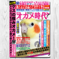 9997868【TOMO YAMASHITA DESIGN STUDIO】A4クリアファイル/オカメ時代◆