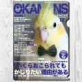 9997950【TOMO YAMASHITA DESIGN STUDIO】A4クリアファイル/オカメンズ12月号 「蝶ネクタイ」◆