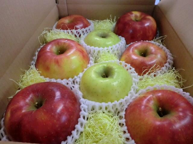 りんご【限定】おまかせ2~3kg箱 ~おすすめのリンゴを多品種の詰合せでお楽しみください