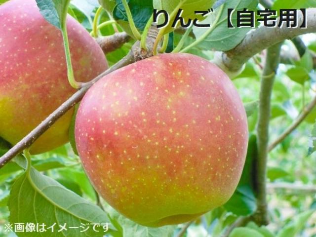 りんご自宅用 3kg(8~15玉程度)
