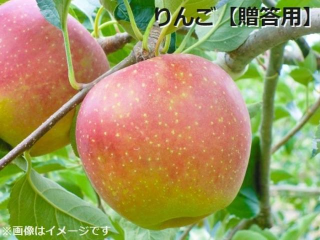りんご贈答用 1~2kg(3~8玉程度)