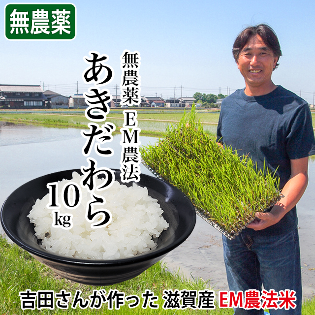 新米 令和2年産 2020年産 完熟近江米 吉田農園 無農薬 EM農法 あきだわら 10kg(5kg×2個)