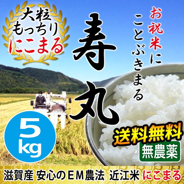 2019年度産 完熟近江米 吉田農園 無農薬 EM農法 にこまる 5kg