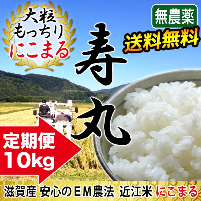 定期購入  完熟近江米 吉田農園 無農薬 EM農法 にこまる 10kg(5kg×2)
