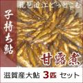子持ち鮎の甘露煮3匹セット
