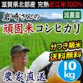 岩崎さんの頑固米コシヒカリ 10kg