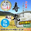 令和2年産 2020年産 完熟近江米吉田農園 無農薬 EM農法 にこまる 5kg