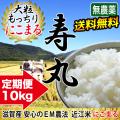 【定期購入】 令和2年産 2020年産 完熟近江米 吉田農園 無農薬 EM農法 にこまる 10kg(5kg×2) 【10月下旬頃出荷予定】