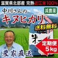 減農薬キヌヒカリ 5kg 定期購入