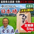 減農薬日本晴 5kg 定期購入