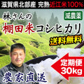 棚田米コシヒカリ 30kg 定期購入