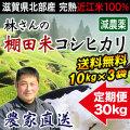 棚田米コシヒカリ 10kg×3 定期購入