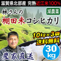 棚田米コシヒカリ30kg
