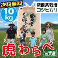 減農薬コシヒカリ 虎わらべ 10kgコース