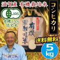 有機栽培米 近江米コシヒカリ
