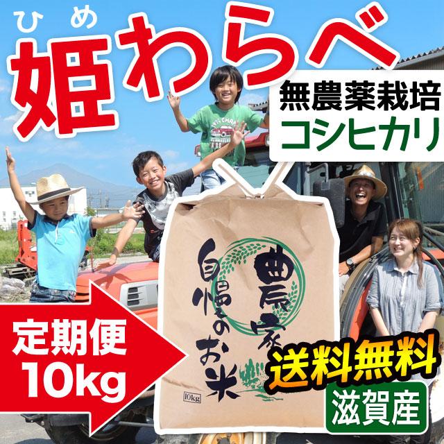 定期便 無農薬コシヒカリ 姫わらべ 10kgコース