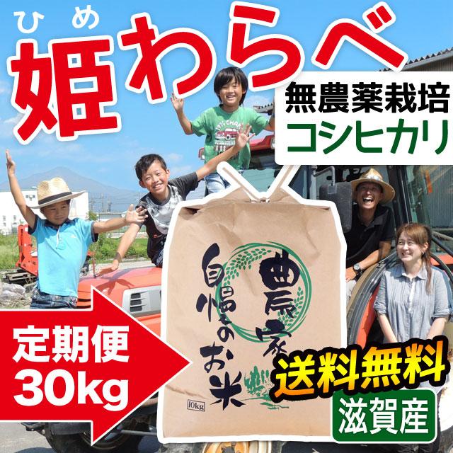 定期便 無農薬コシヒカリ 姫わらべ 30kgコース