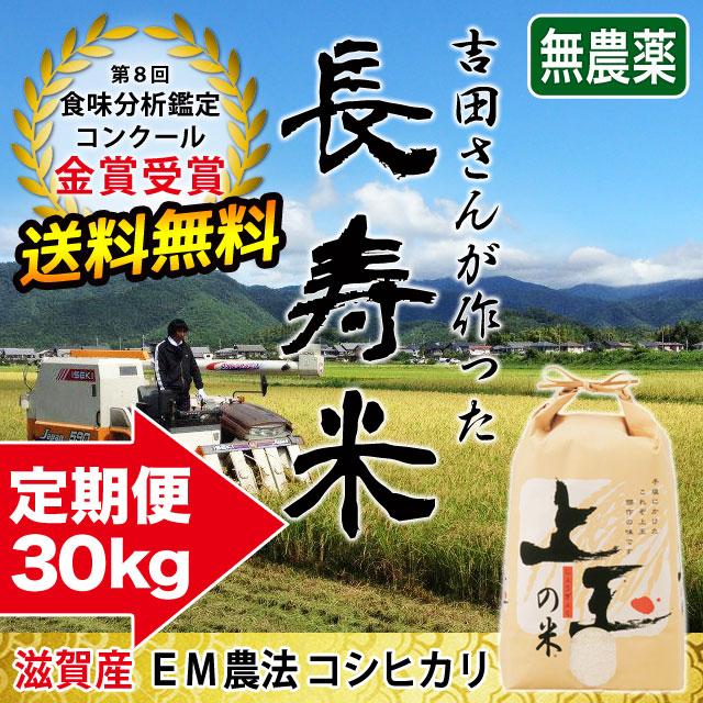 長寿米コシヒカリ 30kg 定期購入