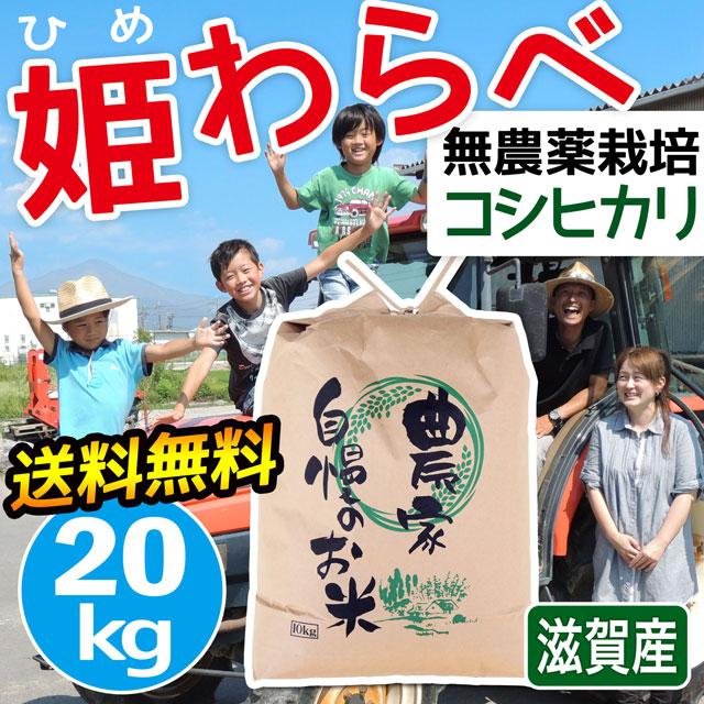 無農薬コシヒカリ 姫わらべ 20kg