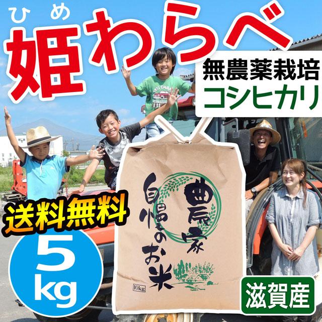 無農薬コシヒカリ 姫わらべ 5kg