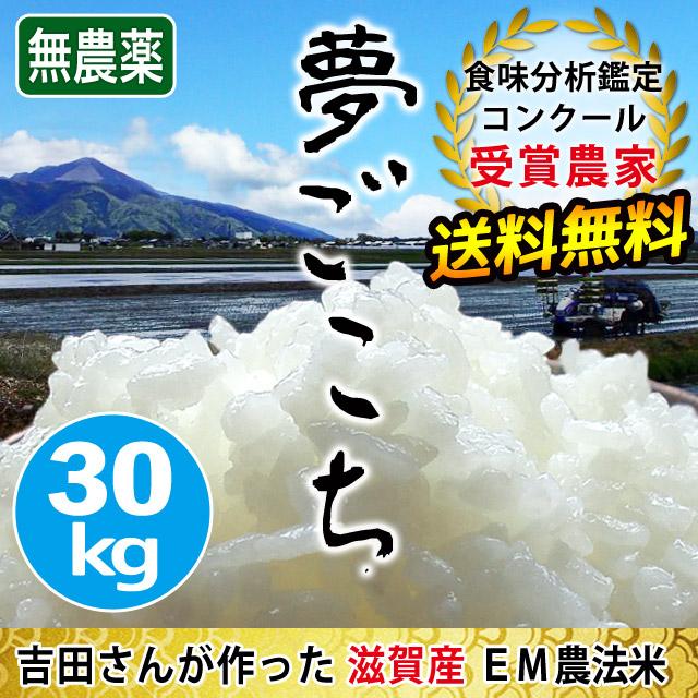夢ごこち 30kg