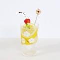 KUKKAグラス+マドラーセット せん(白木)