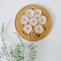 白樺 マーガレットの壁掛け 丸