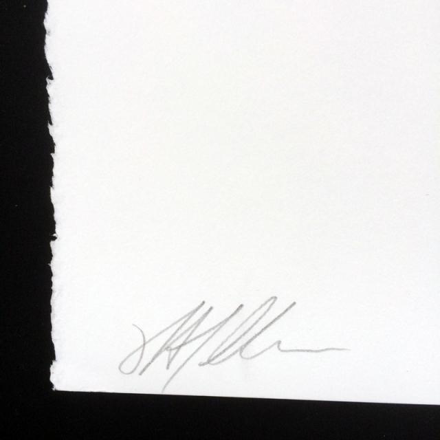 Justin Atallian(ジャスティン・アタリアン) Veins シルクスクリーンポスター